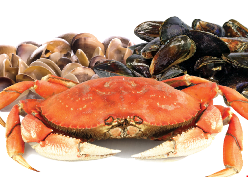 Product image for Shakin Crab $5 OFF any purchase of $35 or more.