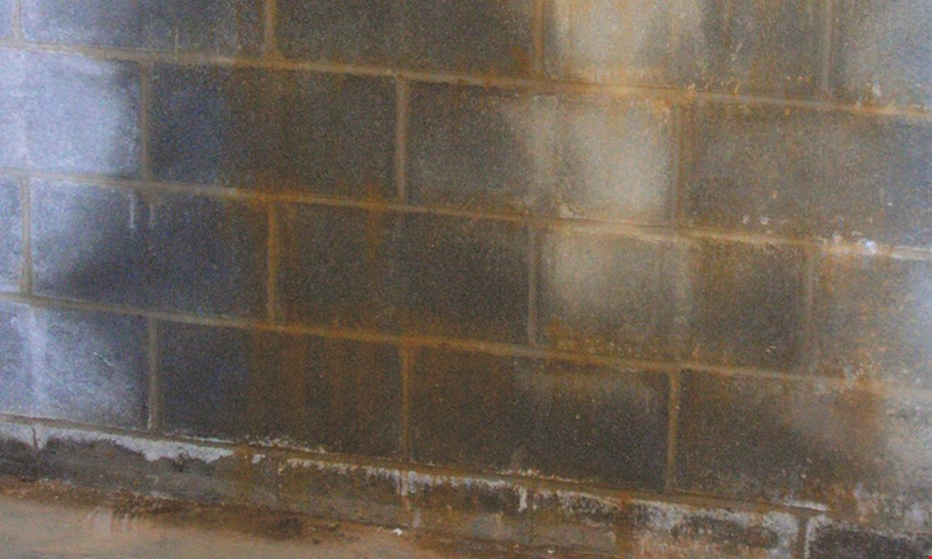 Product image for Dry Tech Waterproofing Solutions 15% off - Up to $750.