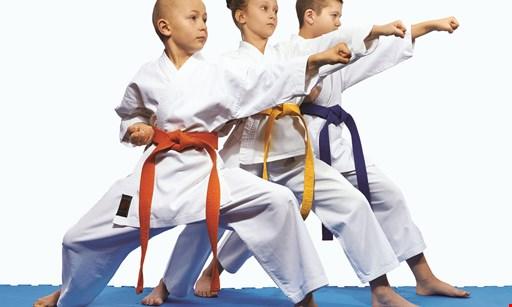 Product image for Pksa Karate Greensburg HALF OFF A UNIFORM