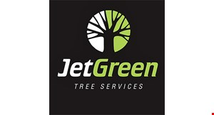 Product image for Jet Green Tree Services $200 off any service