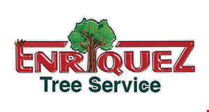 Product image for Enrique Tree Service 10% Off any tree removal.