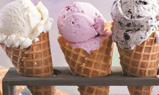 Product image for Polish Water Ice Free small ice buy 1 large menu item, get 1 small ice free.