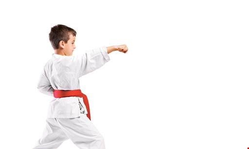 Product image for PAI'S TAE KWON DO ACADEMY $19.95 special trial membership with free t-shirt