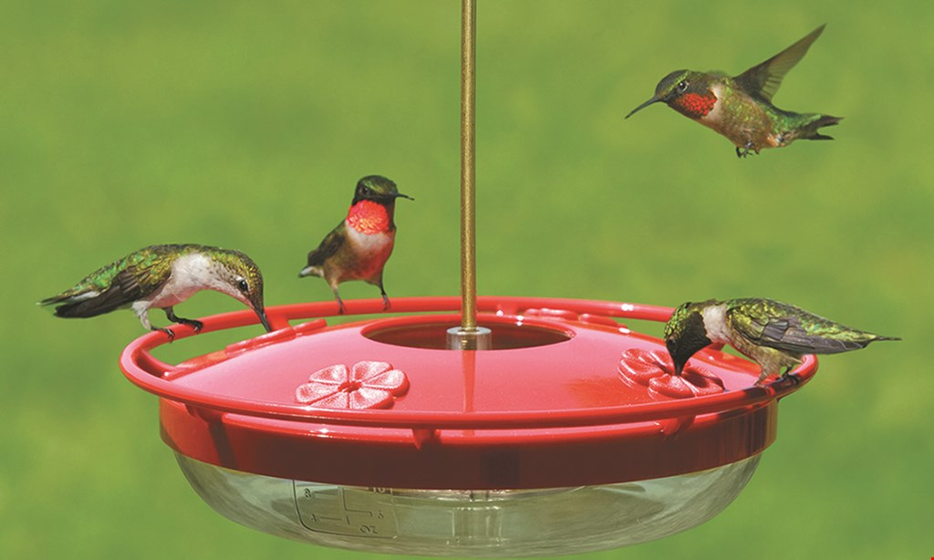Product image for Wild Birds Unlimited 20% Off One Garden Or Gift Item*