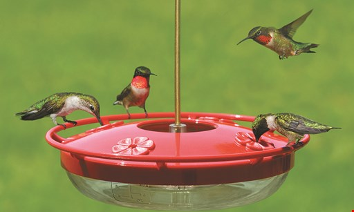 Product image for Wild Birds Unlimited 20% Off One Feeder Or Nesting Box*