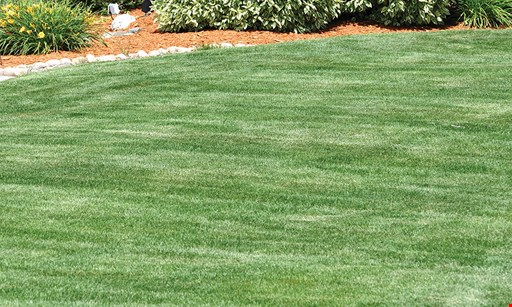 Product image for Lawn Doctor (Palm Beach County) 50% off initial service