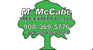 McCabes Tree Experts logo