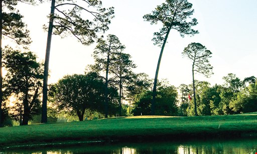 Product image for Pinewood Golf Club $5 off any purchase of $25 or more. $10 off any purchase of $50 or more.