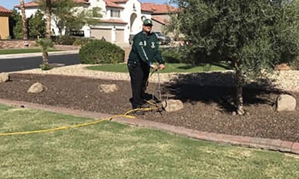 Product image for Certified Tree Health Specialist 10% off one service (Up to $50).