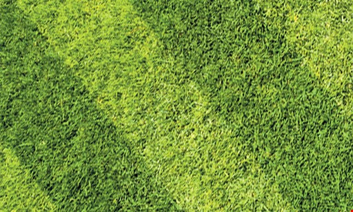 Product image for Bauman Landscaping 20% Off First Month of Lawn Mowing Service