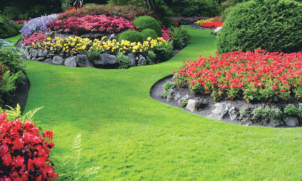 Product image for Novell Landscape Service $100 OFF polymer sand and/or sealing pavers or concrete.