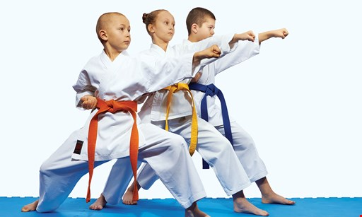 Product image for Dragon Gym Free virtual kids martial arts class on zoom