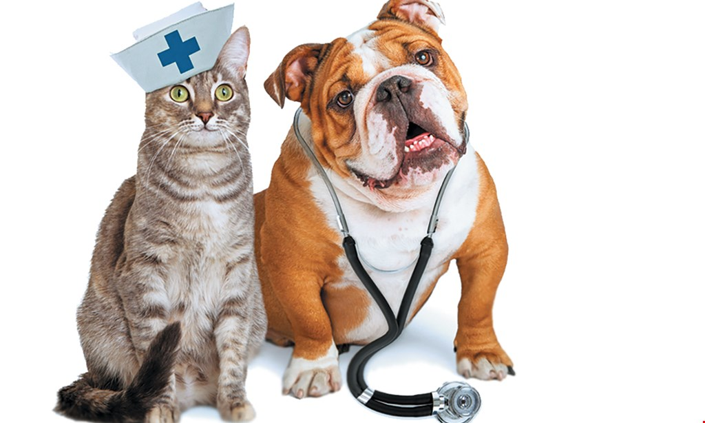 Product image for Advanced Care Veterinary Hospital $5 OFF pet food & supplies of $25 or more.