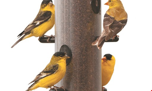 Product image for Wild Birds Unlimited FREE 2021 Bird Calendar* & FREE two feeders with bird food.