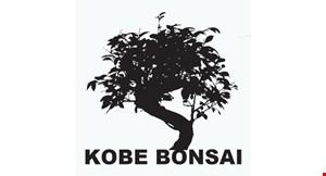 Kobe Bonsai logo