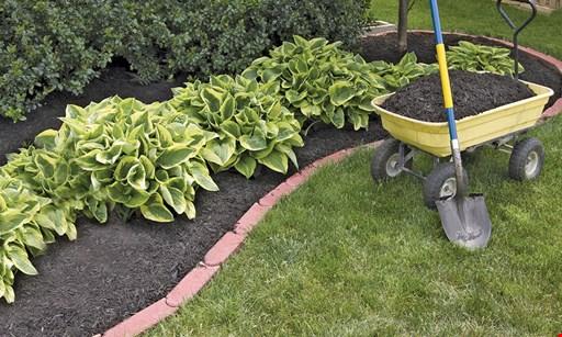 Product image for Mulch Pros $35 OFF bulk mulch - 10 cubic yard minimum CODE: clipper