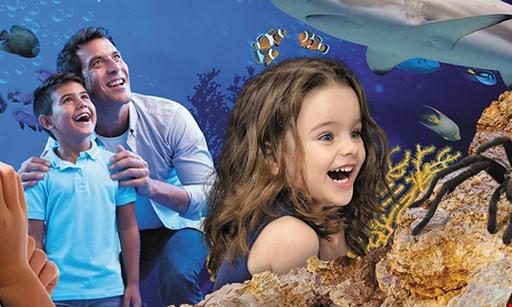 Product image for LEGOLAND Discovery Center Arizona FREE KIDS