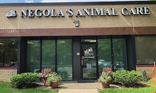 Product image for Negola's Animal Care 20% Off any service