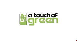 Product image for Touch Of Green $4 off propane tank refill