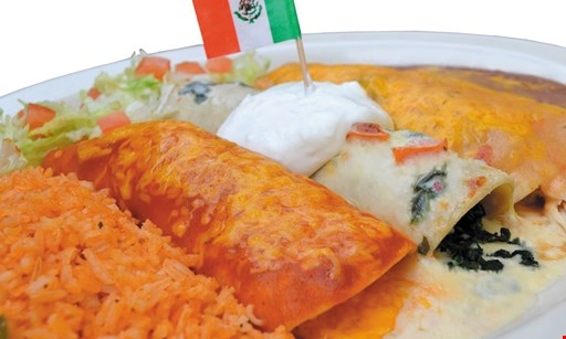 Product image for Rosita's Fine Mexican Food Free cheese crisp