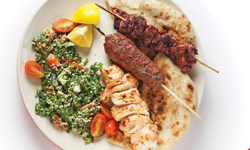 Product image for Turkish Grill 1/2 off lunch deal buy one lunch entree and get a second lunch entree half off equal or lesser value dine-in only