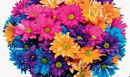 Product image for 2 Crazy Daisies Flowers only $29.99 roses cash and carry walk in special .