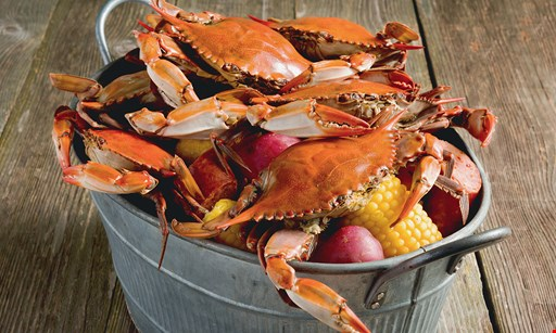 Product image for Captain King's Seafood City 10% Off entire check