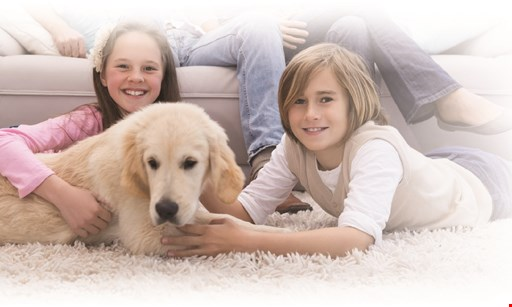 Product image for K & C Chem Dry $25 OFF 3 rooms pet odor removal