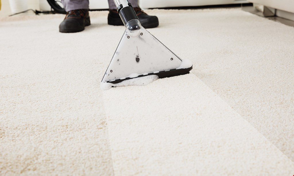 Product image for The Floor Cleaners FREE disinfectant spray with cleaning