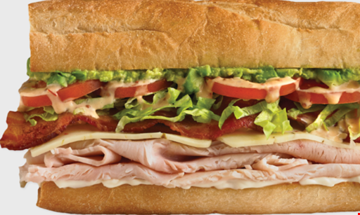 Product image for Which Wich Superior Sandwiches Mog Free 24 oz drink or regular fries with any Wich purchase