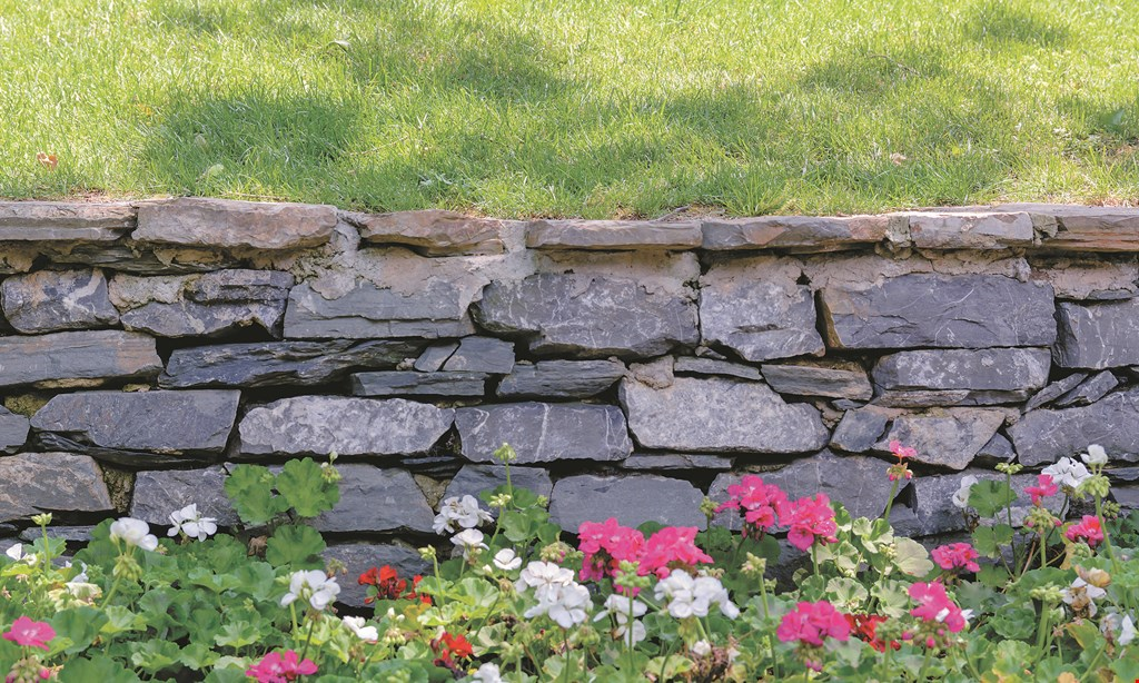 Product image for Jim Jenkins Lawn & Garden Center $20 Off any purchase of $75 or more.