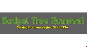 Product image for Budget Tree Removal 10% OFF any tree service.