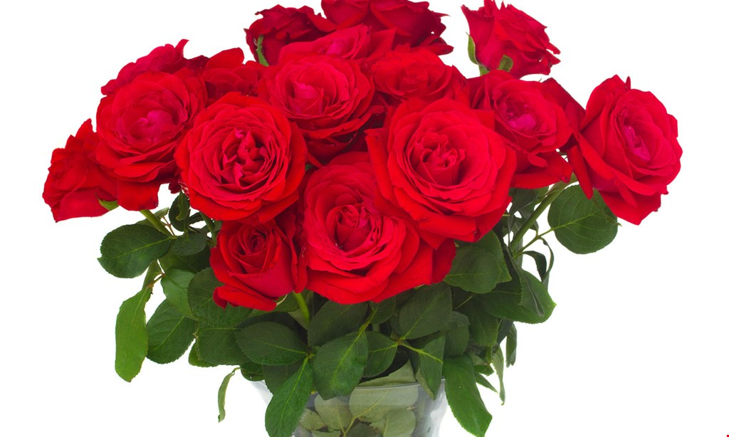Product image for Arnold Inc. Flowershop $10 off any purchase of $100 or more.