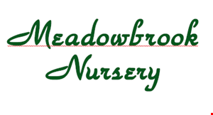 Product image for Meadowbrook Nursery And Lansdcaping, Llc 15% off any plant or tree Limit: One-time use only.