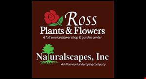 Ross Plants & Flowers logo