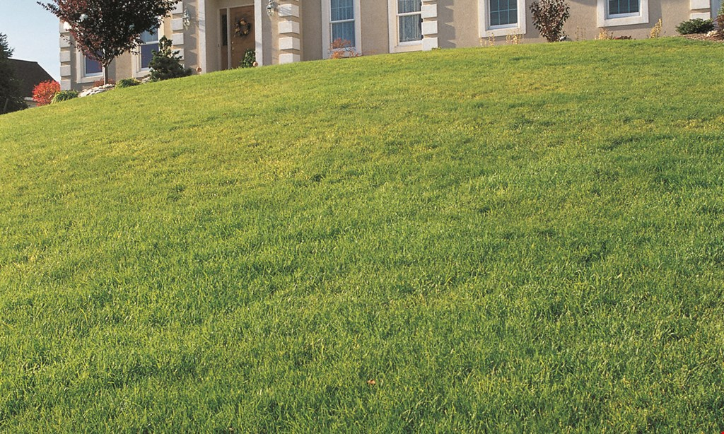 Product image for Emerald Greens Lawn Care free fertilizer with core aeration and seeding service up to a $35 value.