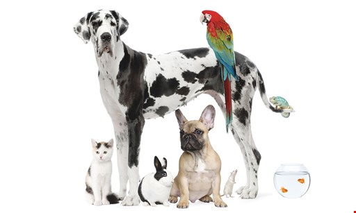 Product image for PET SUPPLY $5 off your purchase of $30 or more