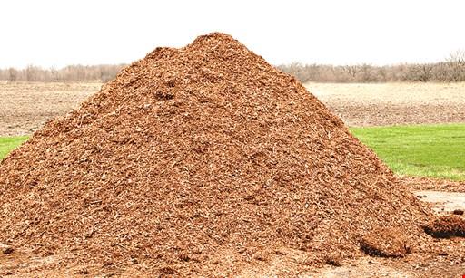 Product image for Bark Blowers $25 off Hemlock Bark Dust