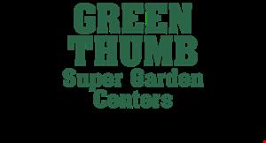 Green Thumb Nursery Localflavor Com