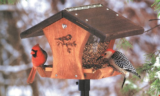 Product image for Wild Birds Unlimited 15% Off Hummingbird Feeders