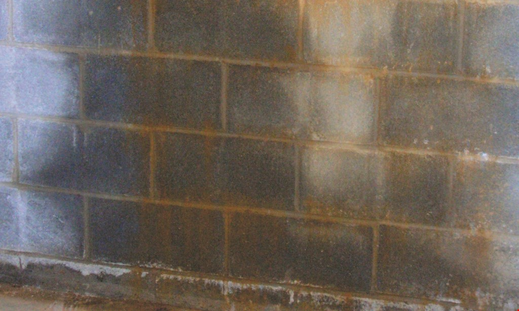 Product image for Everdry Waterproofing $500 off All Services No mess! No Backhoes!