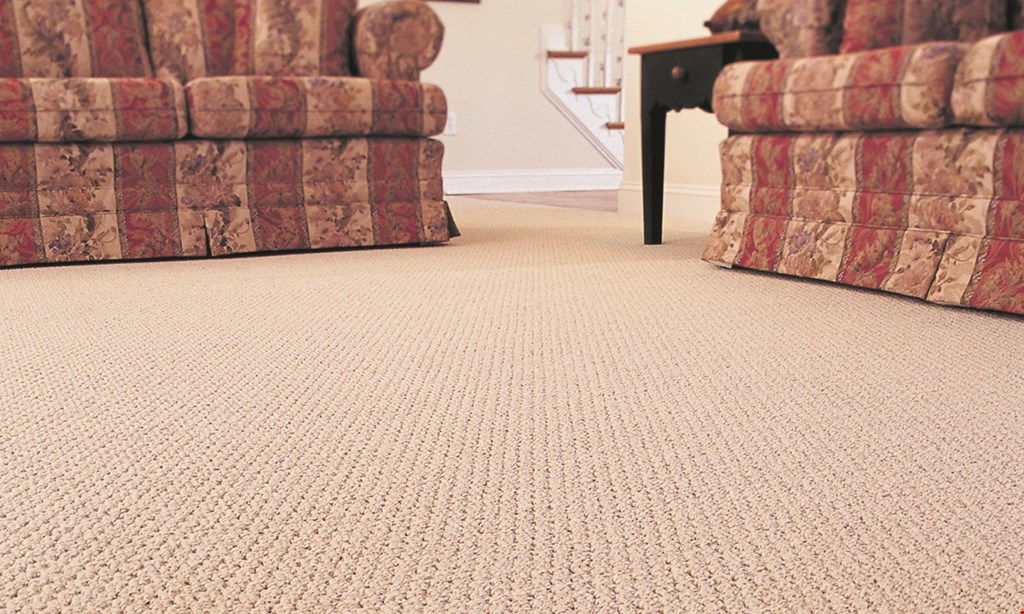 Product image for American Carpet DESIGNER CARPET COLLECTON 0% financing 12 month (free credit) see store for details.
