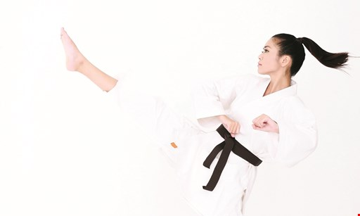 Product image for PAI'S TAE KWON DO $19.95 special trial membership with free t-shirt