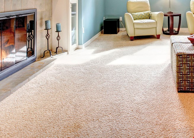 Product image for Dary Carpets & Floors Top Quality Shaw Remnants Available From 99¢ per sq. ft.