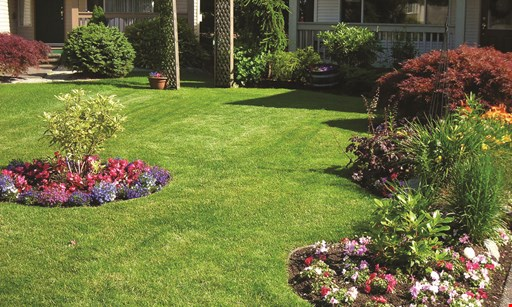 Product image for Creech's Lawn & Landscape Garden Center $300 OFF Any landscape or hardscape project of $3000.00 or more Prior sales excluded. One time use coupon per household per year