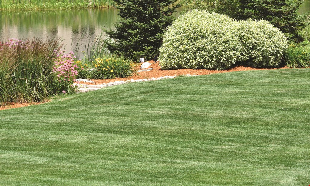 Product image for Picture Perfect Landscaping & Lawn New Client Special 15% off your next service