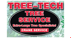 Product image for Tree Tech Tree Service $100 off any job over $500.