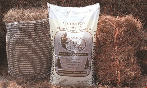 Product image for Gomez Pine Straw $5 Off your purchase with the purchase of 25 bales or more.