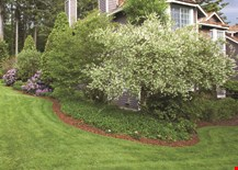 Product image for Central Tree Service Free Mulch Delivery