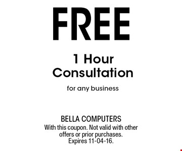 Free 1 Hour Consultation for any business. With this coupon. Not valid with other offers or prior purchases. Expires 11-04-16.